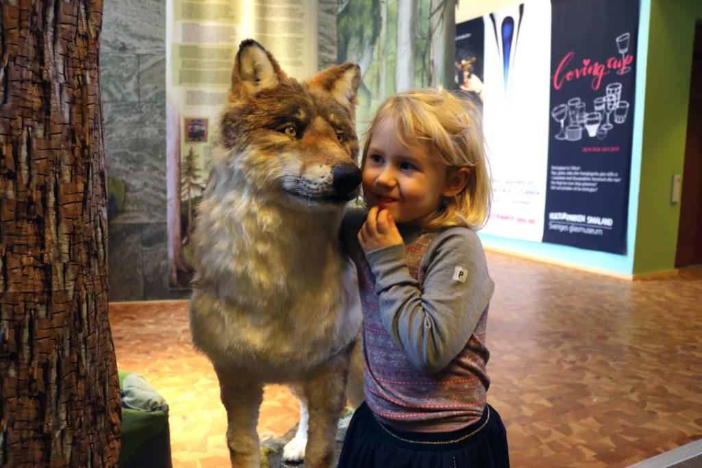 Konstgjorda vargen Yrla tillsammans med ett besökande barn